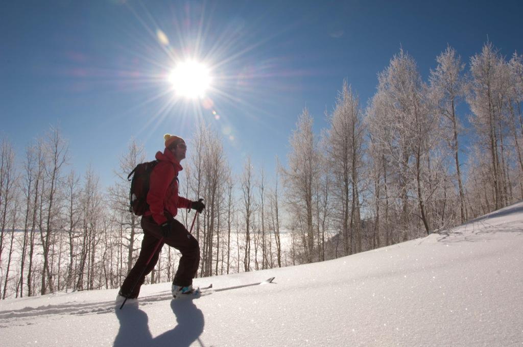 Backcountry skiing, Utah